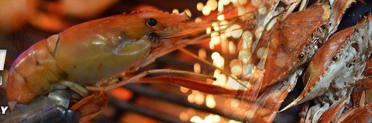 river-prawn-web-banner_1200x240-2