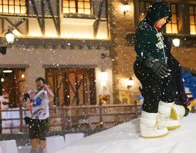 gateway-ekkamai-%e7%9a%84-snow-town