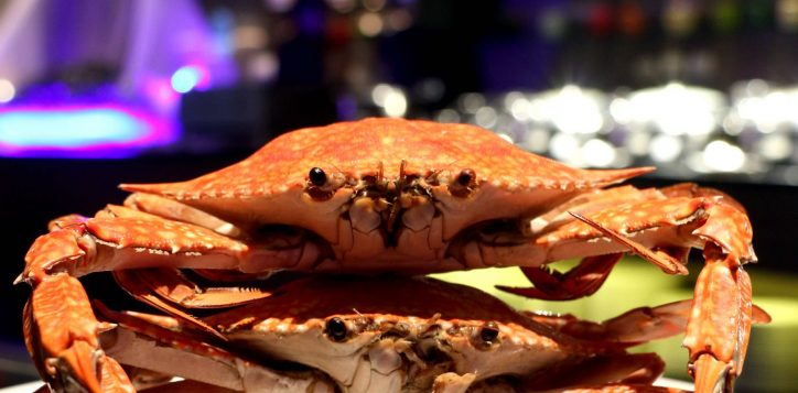 crab-buffet-promotion2-2