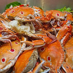 novotel-bangkok-ploenchit-sukhumvit-buffet-promotion_4-2