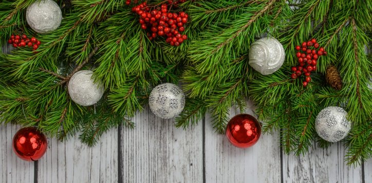 background-backdrop-christmas-decoration-pine-xmas-1418242-pxhere-com_-2